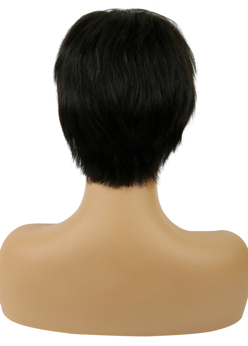 Celebrity Short Straight Hairstyle Capless Human Hair Wig 8 Inches