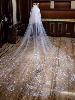 Beautiful Cathedral Wedding Veil with Lace Appliques