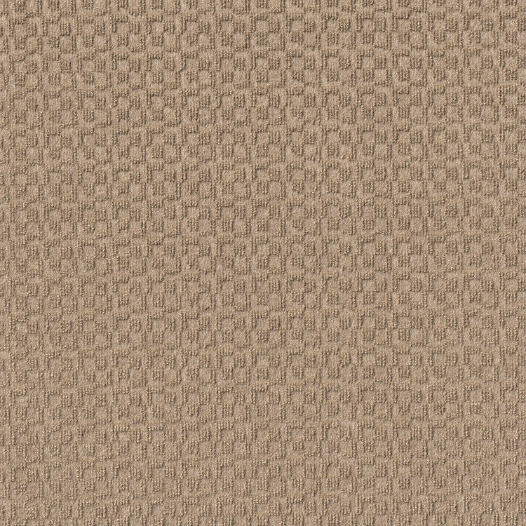 Orbit in Taupe - Carpet by Newton