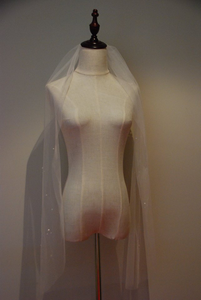 Wedding Veil with Pearls