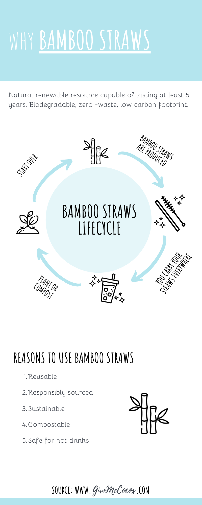 Why You Should Use Bamboo Straws