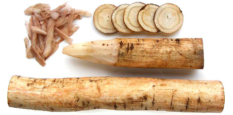 burdock root for good liver health
