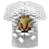 Cat Print Graphic Tees (Various Styles)