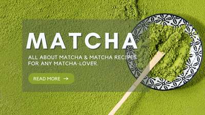 Matcha Recipes for Any Matcha Lover