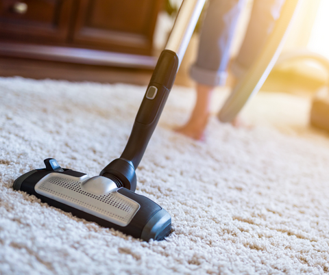 Vacuuming pet hair from carpet to prevent ringworm