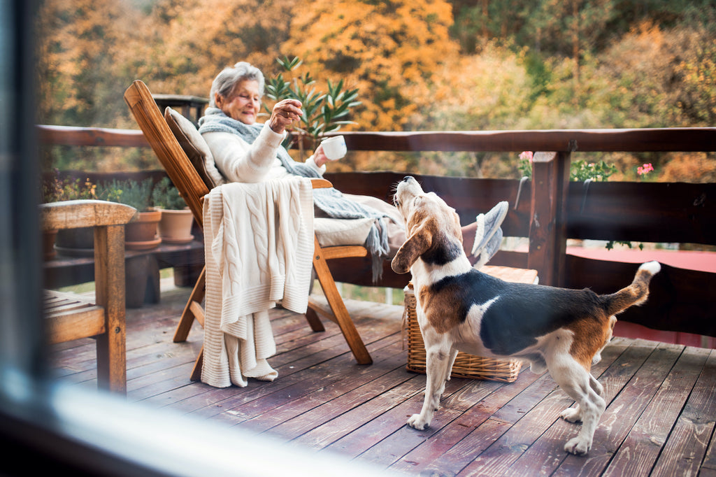 Dog wheezing: an older woman sits on the porch with her happy, baying beagle