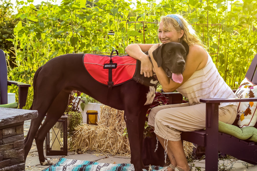 Natural anti-inflammatory for dogs: A woman hugs her large breed dog