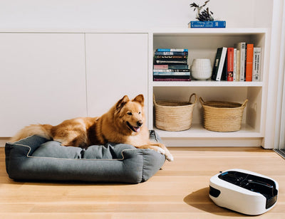 Coral One Handheld and Robot Vacuum