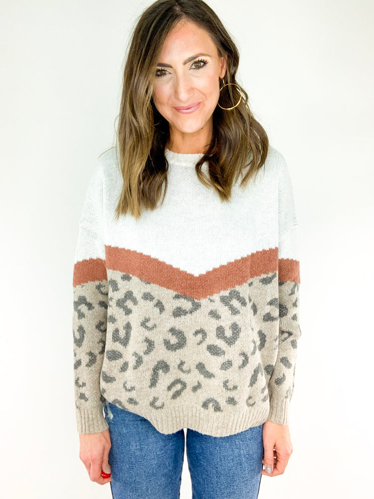 Load image into Gallery viewer, Animal Print Chevron Colorblock Sweater