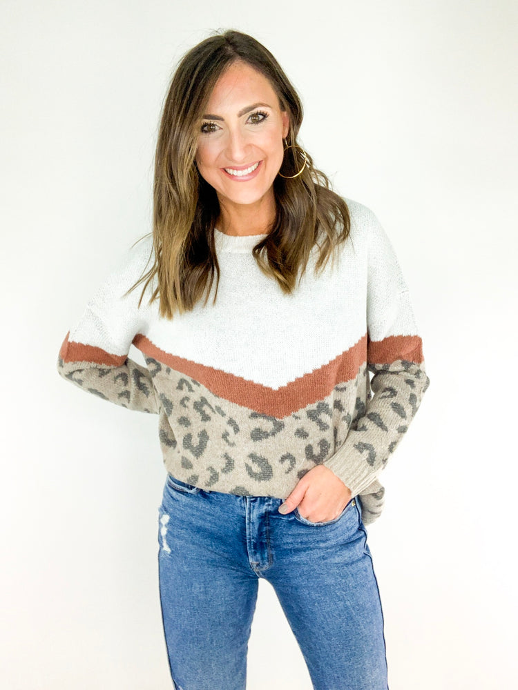 Animal Print Chevron Colorblock Sweater