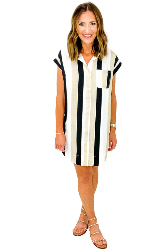 Neutral Stripe Shirt Dress
