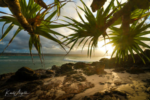 Pandanus Sunset - Double Island Point - Surf Art Apparel