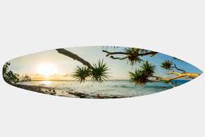 Noosa Sunset - Surfboard Mounted Print - Surf Art Apparel