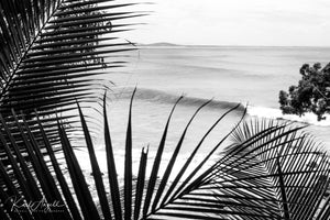 Black & White Noosa Lines - Surf Art Apparel
