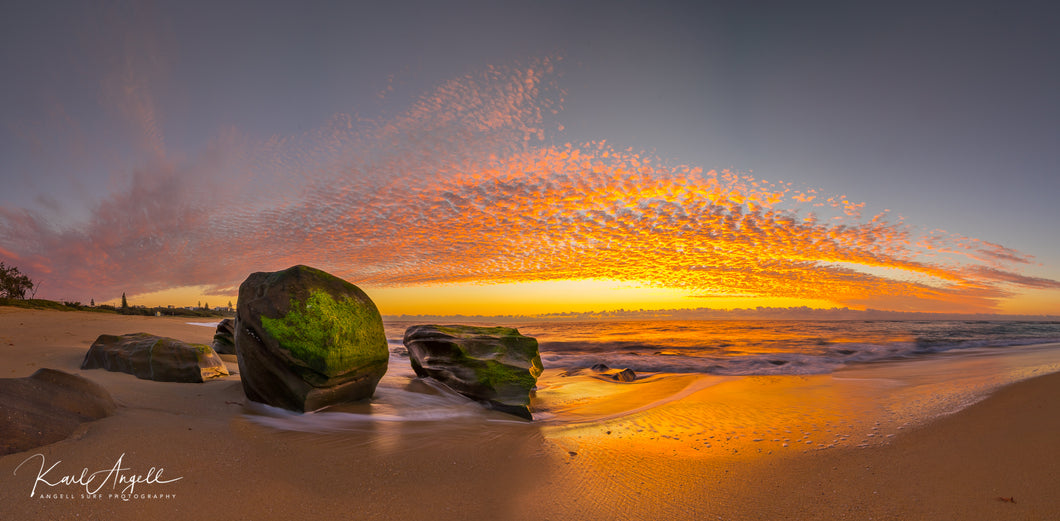 Shelly Beach Sunrise - Panoramic - Surf Art Apparel