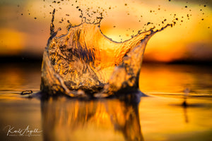 Sand Splash - Currimundi Lake - Surf Art Apparel