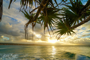 Golden Light - Double Island Point - Surf Art Apparel