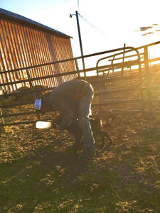 Day 9 and 10 of our 12-Day Ranching Journal