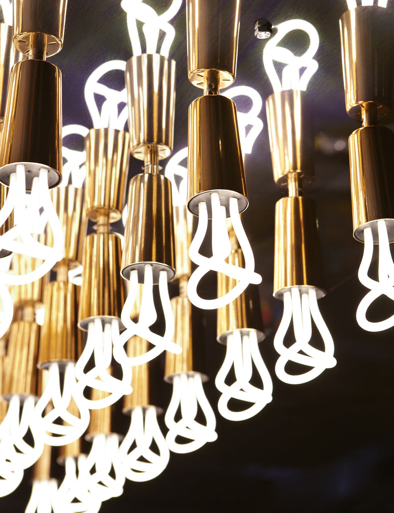 Baby Plumen 001 Multipack - 12 Bulbs