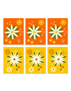 6 Card Boxed Set of Daisies