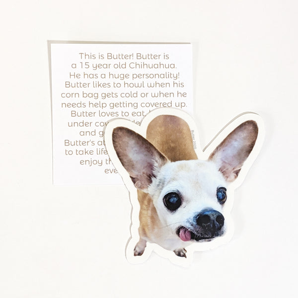 Butter the Chihuahua Vinyl Sticker-FREE SHIPPING, ALL proceeds go to Seattle Humane Pet Food Bank