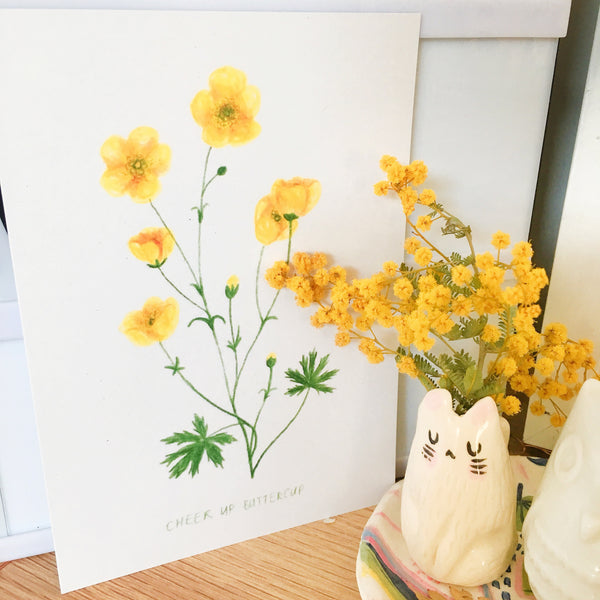 "Postcard displayed on a desk with yellow wattle flowers. The postcard features a botanical illustration of buttercup flowers, and handwritten below is the quote ""CHEER UP BUTTERCUP"""