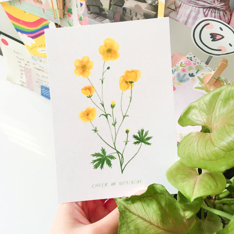 "Postcard held up next to a plant. The postcard features a botanical illustration of buttercup flowers, and handwritten below is the quote ""CHEER UP BUTTERCUP"""
