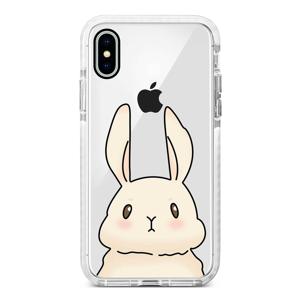 Case Rabbit 08
