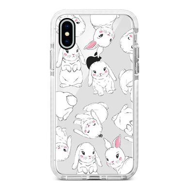 Case Rabbit 10