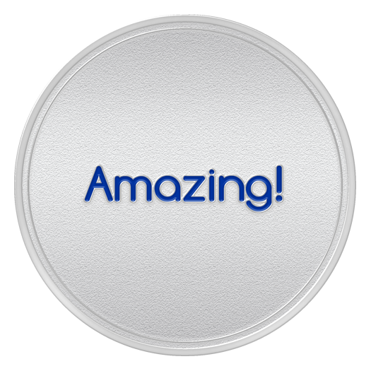 AMAZING Spot Award or 1st Month Service Anniversary Coin