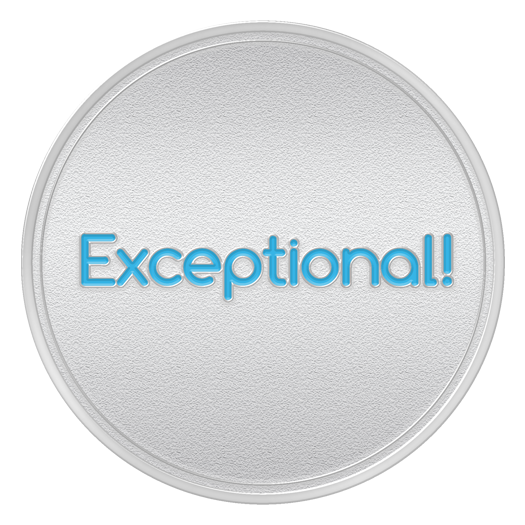 EXCEPTIONAL Spot Award or 9th Month Service Anniversary Coin