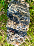 Raw Black Tourmaline Crystal With Muscovite (Large)