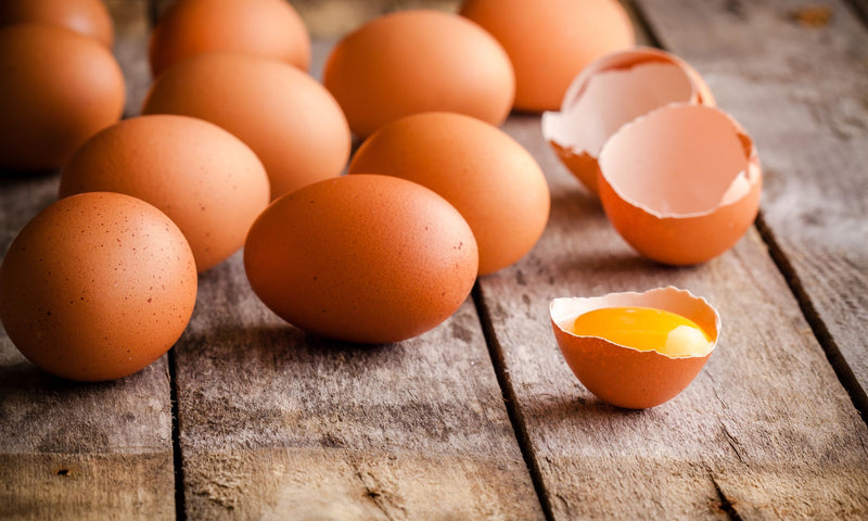 How Choline Helps Improve Liver Health