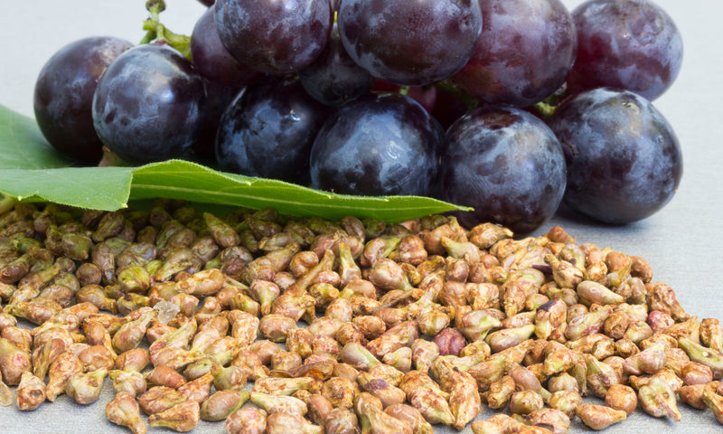 Science-Based Health Benefits of Grape Seed Extract