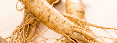Science-Based Health Benefits of Korean Ginseng (Panax ginseng)
