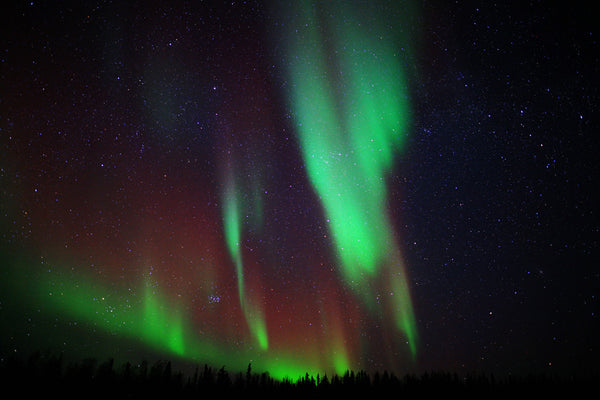Stunning Yukon Northern Lights Show