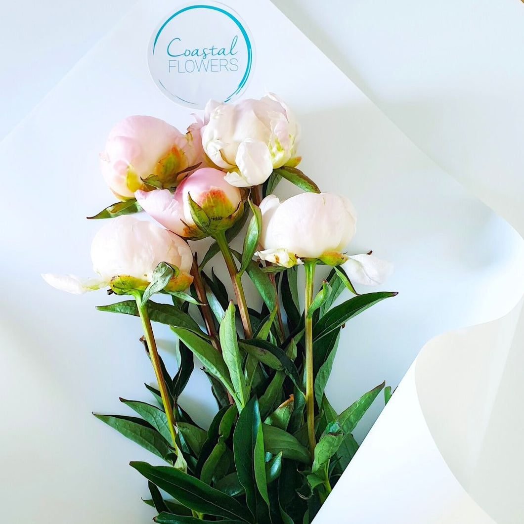 Peony Rose Bouquet | Coastal Flowers