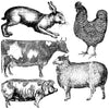 IOD Farm Animals Decor Stamp