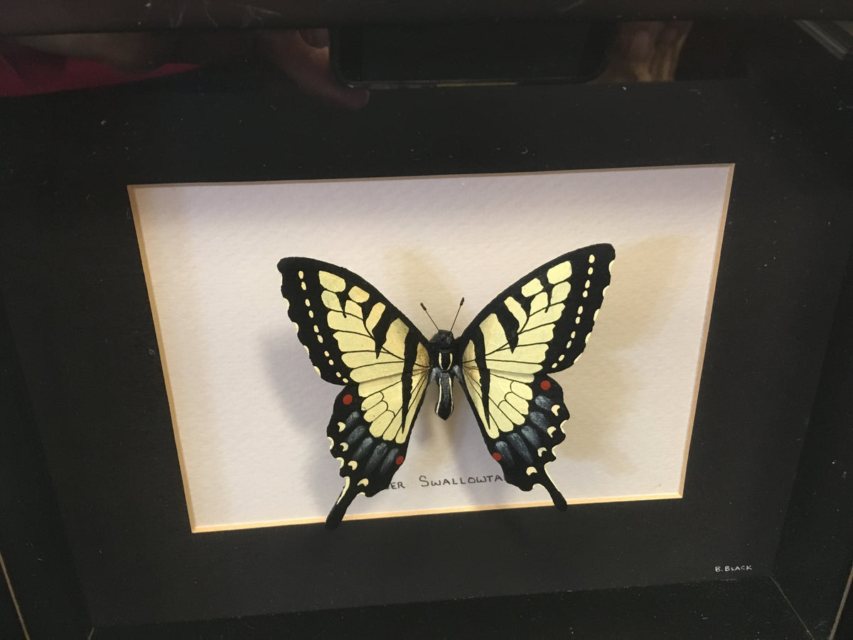 Set of 4 Hand Painted Butterfly Art Shadowboxes