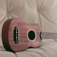 Private Online Ukulele Lessons - Free Trial with Aaron Guthridge