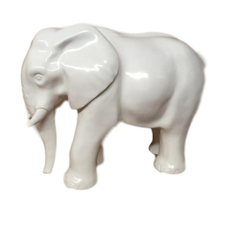 Elephant - White Design