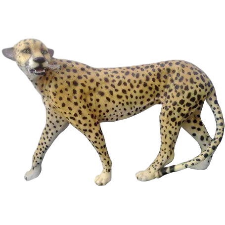 Natural Jaguar