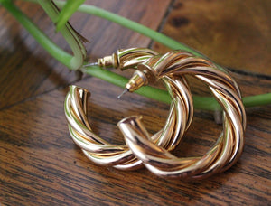 THE TWISTED HOOPS