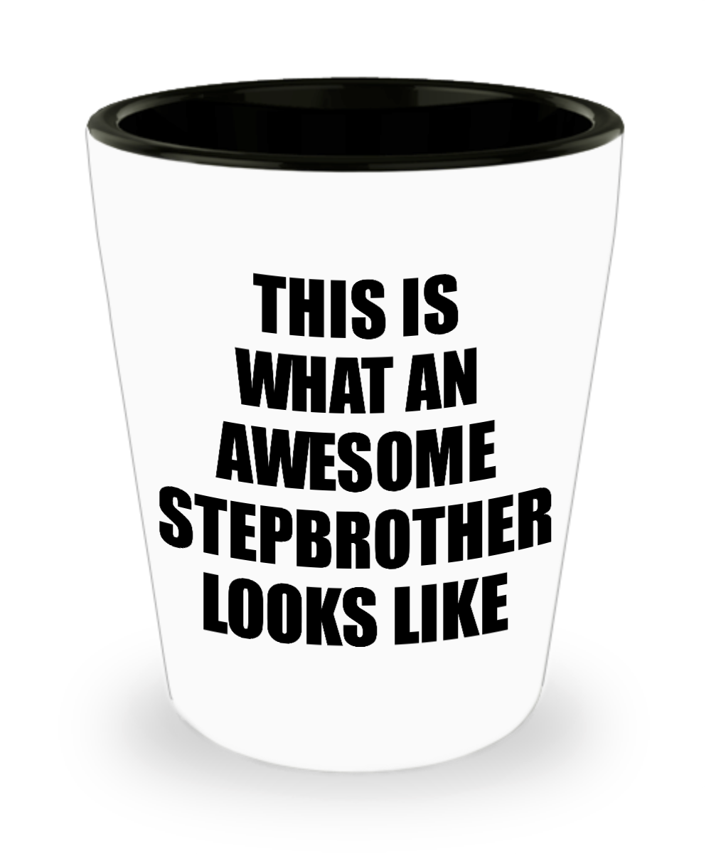 Awesome Stepbrother Shot Glass Funny Gift Idea For My Half Brother Looks Like Novelty Gag Liquor Lover Alcohol 1.5 oz Shotglass-Shot Glass