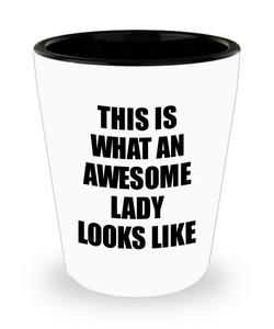 Awesome Lady Shot Glass Funny Gift Idea For My Girl Looks Like Novelty Gag Liquor Lover Alcohol 1.5 oz Shotglass-Shot Glass