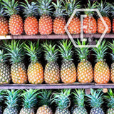 E-Flavors - Pineapple (Real) Flavor Concentrate Flavouring Concentrate Nicvape Inc.
