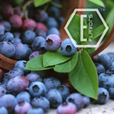 E-Flavors - Blueberry (Wild) Flavor Concentrate Flavouring Concentrate Nicvape Inc.
