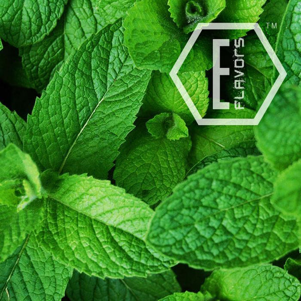 E-Flavors - Menthol Flavor Concentrate Flavouring Concentrate Nicvape Inc.