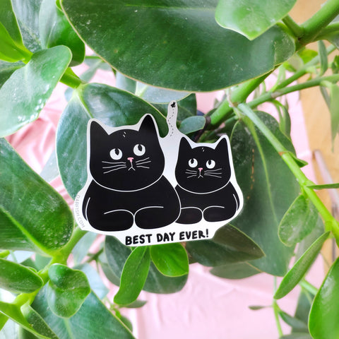 Best day ever cats Sticker
