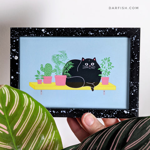 Fat cat on shelf Framed Postcard
